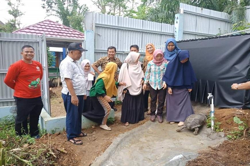 Pelepasan Kura-kura Baning Gajah (Monouria Emys) dan Desiminasi Proyek PEER